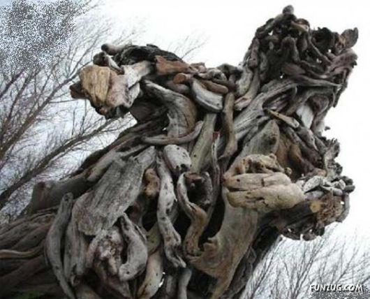 Amazing Art with Tree Branches
