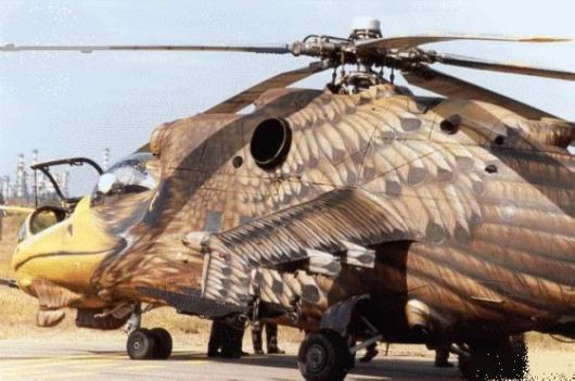 Is it a Helicopter or a Bird?