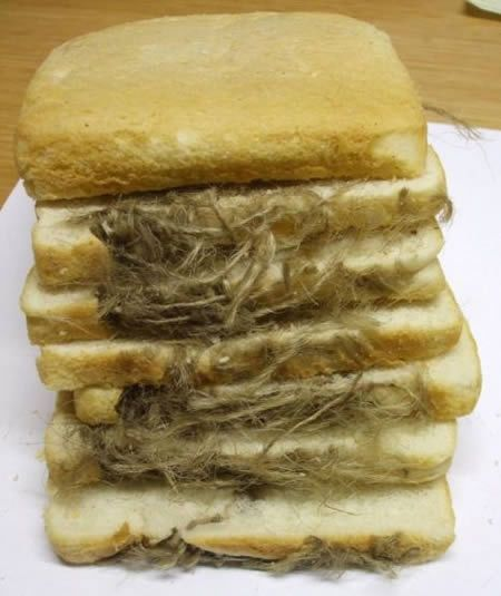 Most Disgusting Things Found In Food