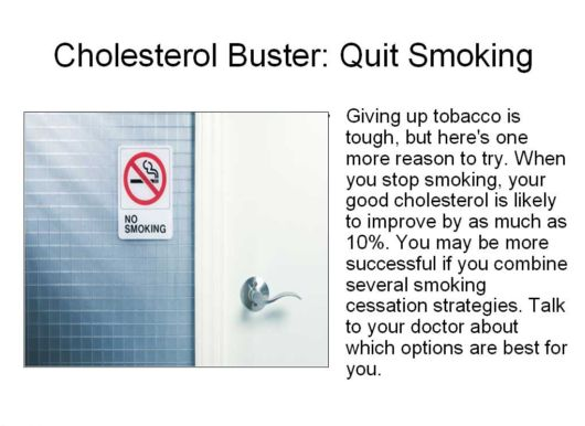 All You Need To Know About Cholestrol
