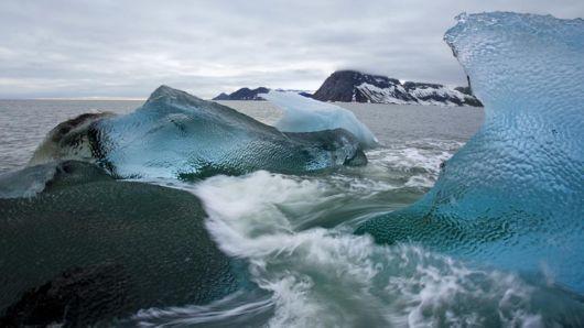 An Arctic Summer Adventure