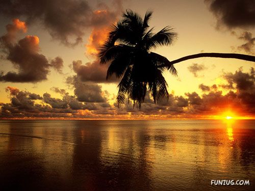 Beautiful Sunsets Photography