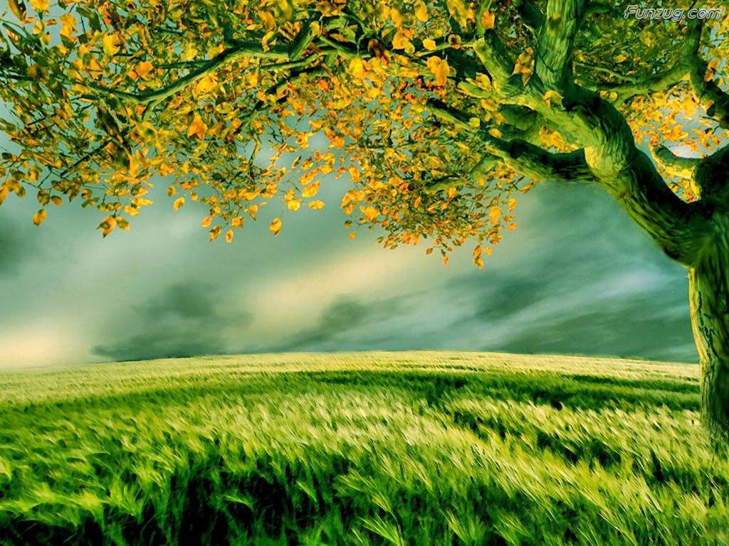 So Nice Nature Wallpapers