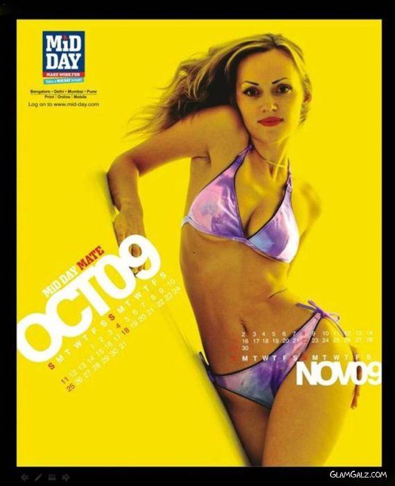 Click to Enlarge - Mid-Day Desktop Calendar 2009
