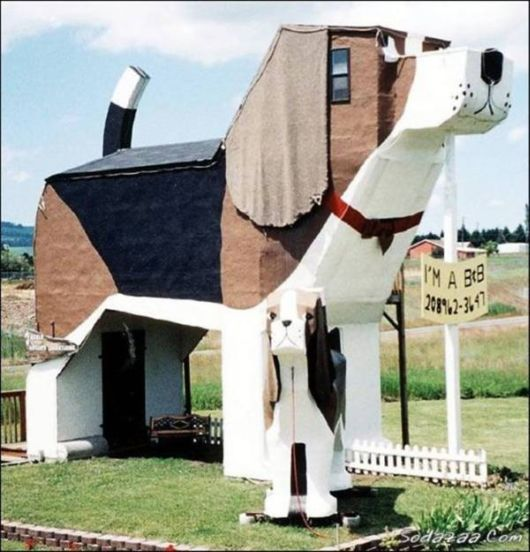 Unconventional Houses Around The World